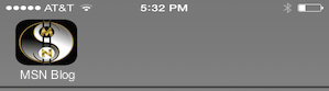 iPhone Screen Shot Apple Touch Icon Preview