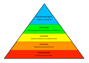 Maslow Theorized Hierarchy of Needs